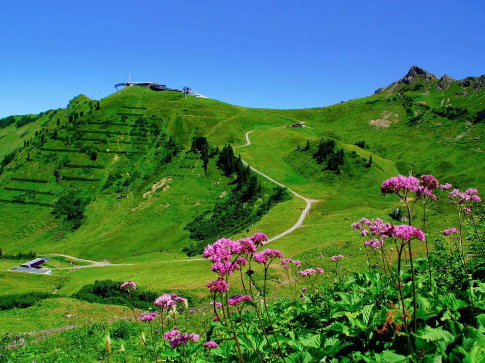 Ausflugsziele im Allgäu, Ofterschwang und Umgebung