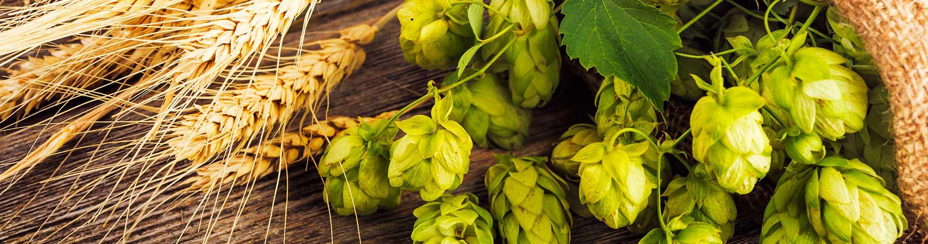 Das Autenrieder Brauerei-Umweltmanagement