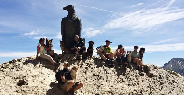 Alpenüberquerung mit Hund