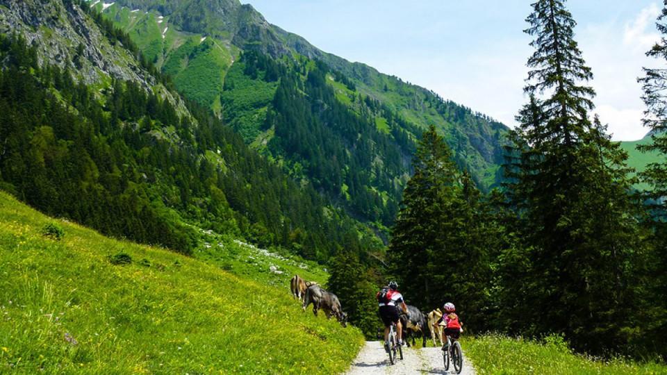 Sommerurlaub im Allgäu: Mountainbike