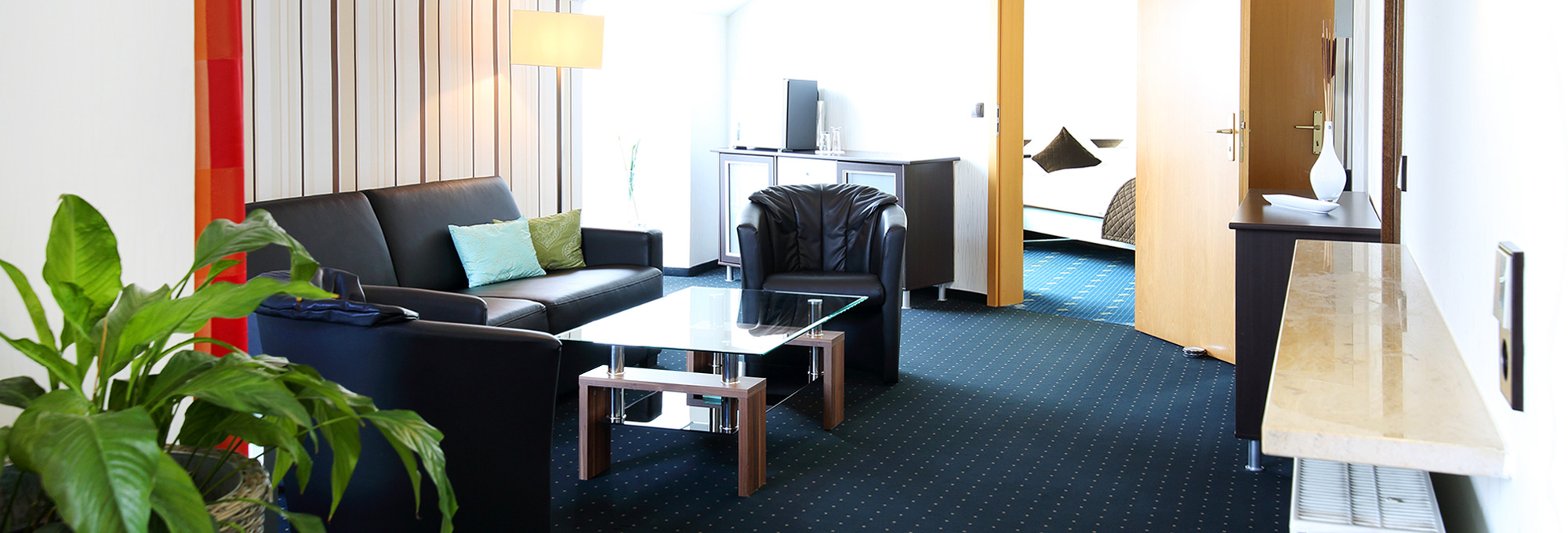 FULLY FURNISHED APARTMENT IN GIENGEN