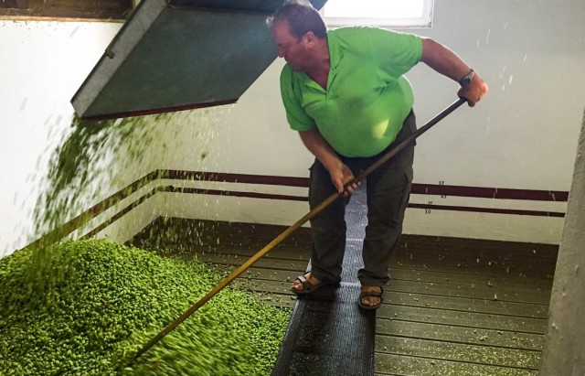 Natürliche Rohstoffe für unser fränkisches Bier