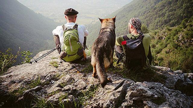 Hund und Menschen auf Berg