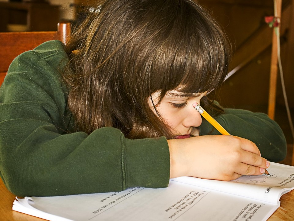 Quelle: Randen Pederson from Superior, CC BY 2.0 <https://creativecommons.org/licenses/by/2.0>, via Wikimedia Commons - https://commons.wikimedia.org/wiki/File:Boy_doing_homework_(4596604619).jpg