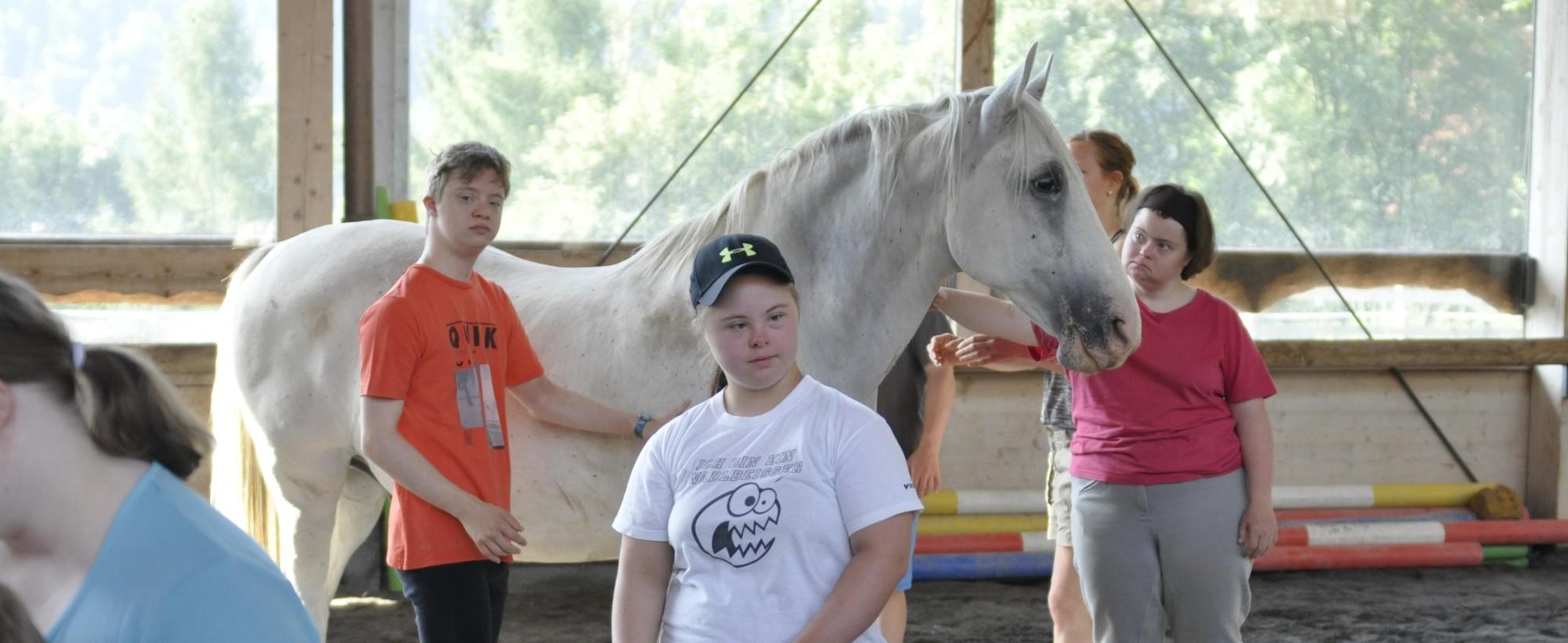 Pferde Therapie für Kinder und Erwachsene