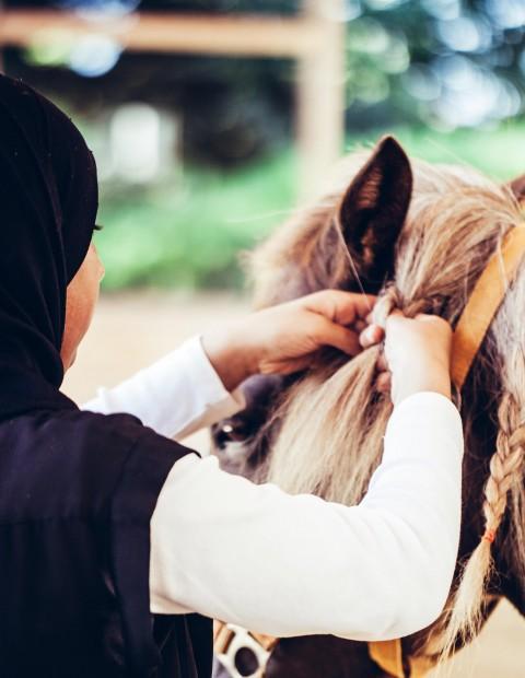 Therapie mit Pferden