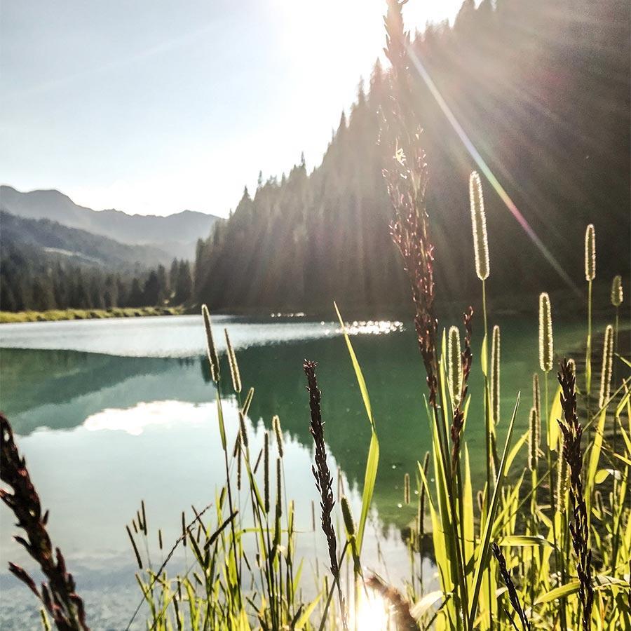Sommer im Kleinwalsertal zum Entspannen und aktiv sein