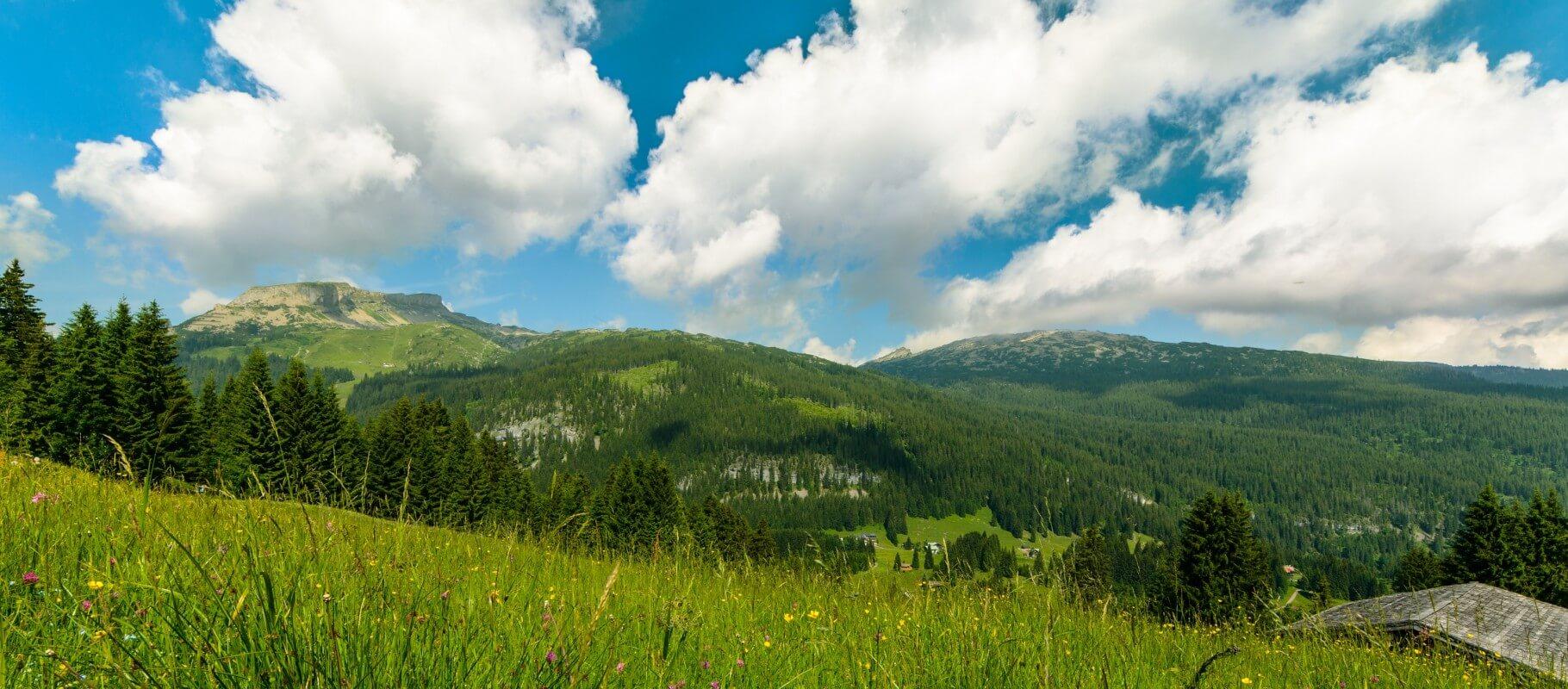 Urlaub in den Bergen, Kleinwalsertal in Österreich