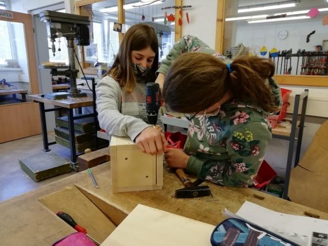Projekt: Nistkästen für Blau- und Kohlmeisen