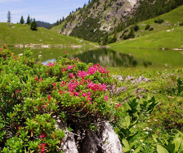 Urlaub in Oberstdorf im Allgäu