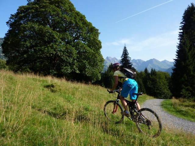 Sommeraktivitäten und Mountainbike im Allgäu
