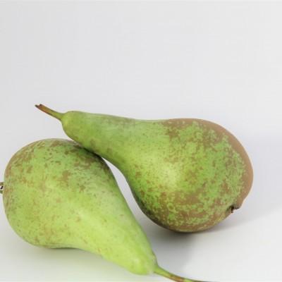 Obst - Birne grün