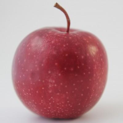 Obst - Apfel rot klein