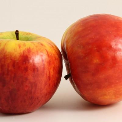 Obst - Apfel Topaz