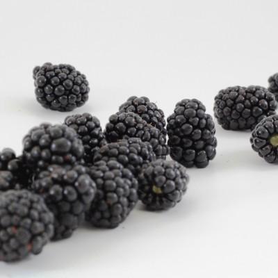 Obst - Brombeeren