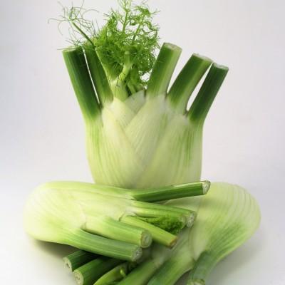 Gemüse - Fenchel