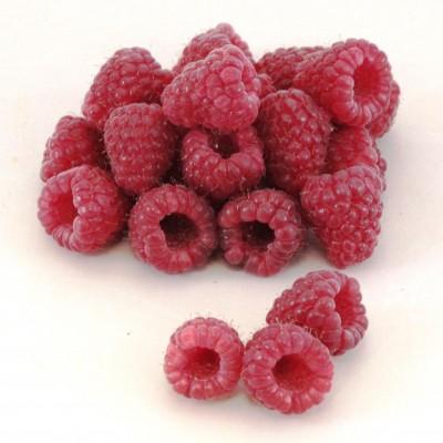 Obst - Himbeeren