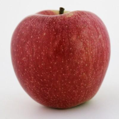 Obst - Apfel Braeburn