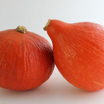 Gemüse - Kürbis Hokkaido