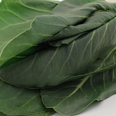 Gemüse - Mangold