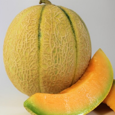 Obst - Melone Cantaloupe