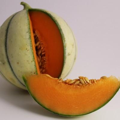 Obst - Melone Charentais