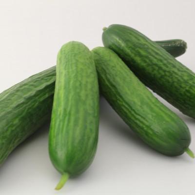 Gemüse - Mini Gurken