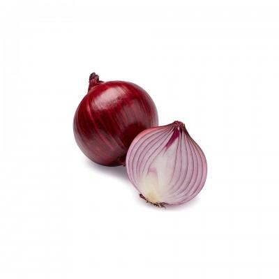 Gemüse - Zwiebel rot