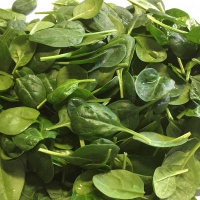 Gemüse - Spinat