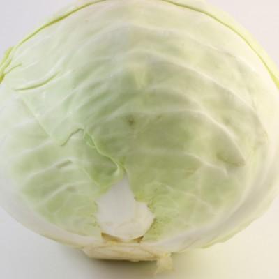 Gemüse - Weisskohl