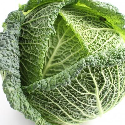 Gemüse - Wirsingkohl