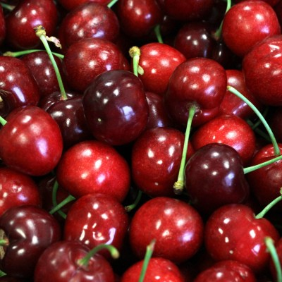 Obst - Kirsche